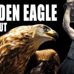 Golden Eagle Workout