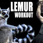 Lemur Workout