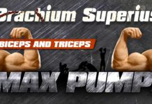 Biceps and triceps workout