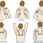 Scapular Retraction With Depression