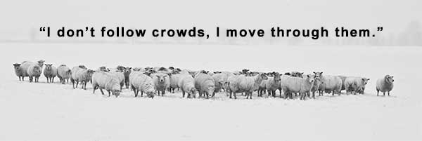 """I don't follow crowds, I move through them."""