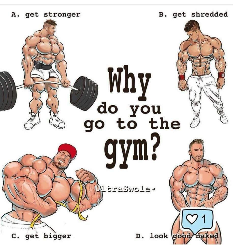 Why do you go to the gym?