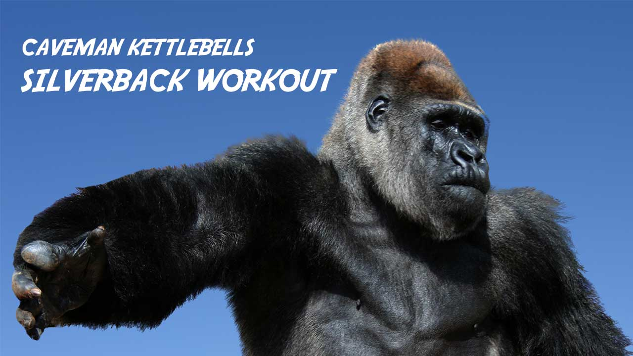 Silverback Workout Functional Fitness Workout