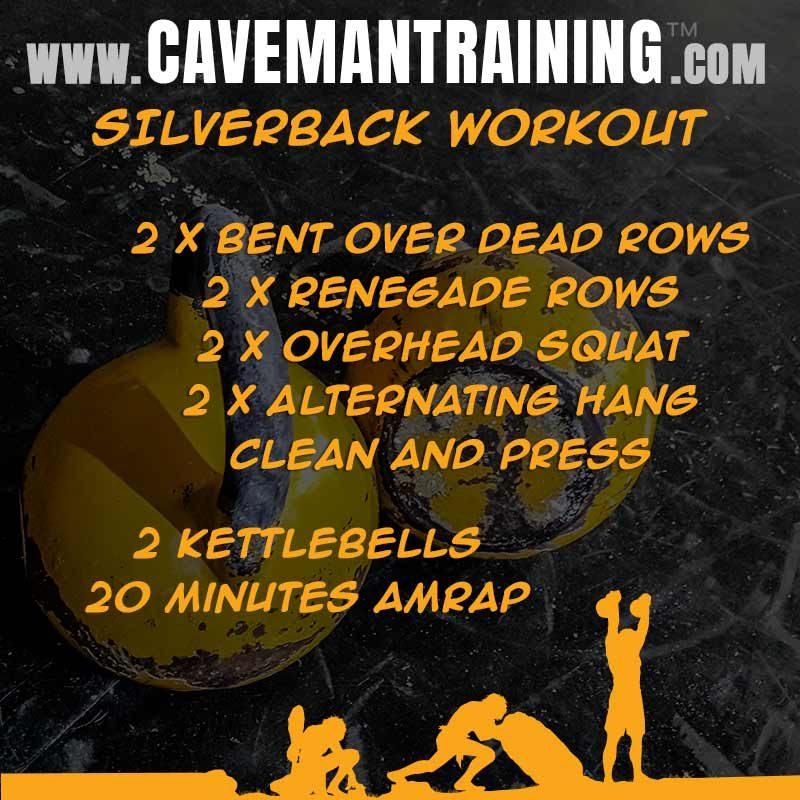 Silverback Workout