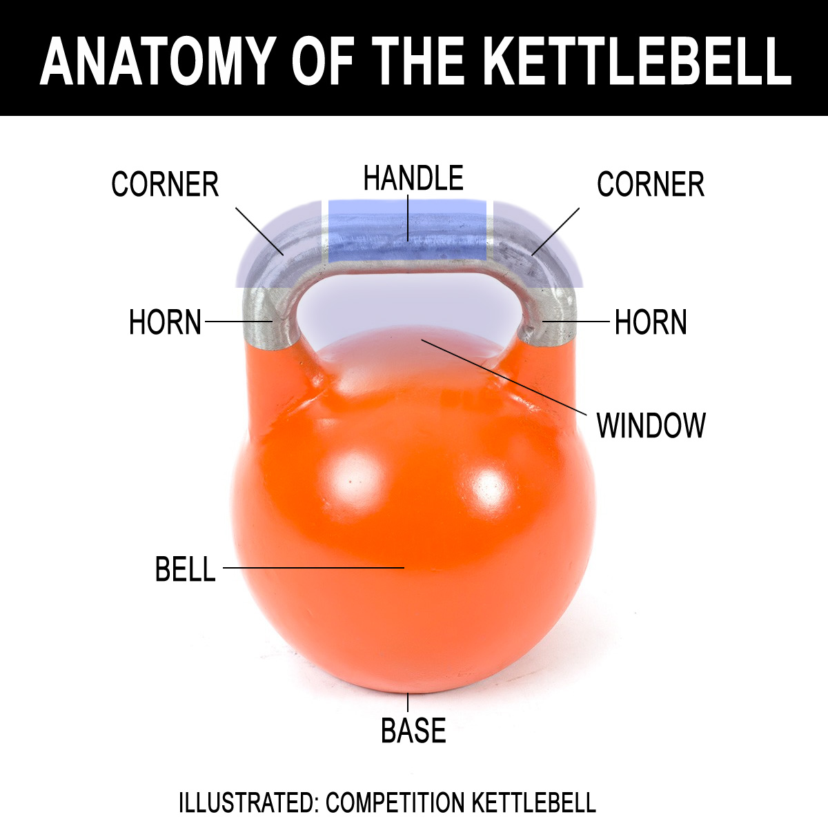 Kettlebell Anatomy