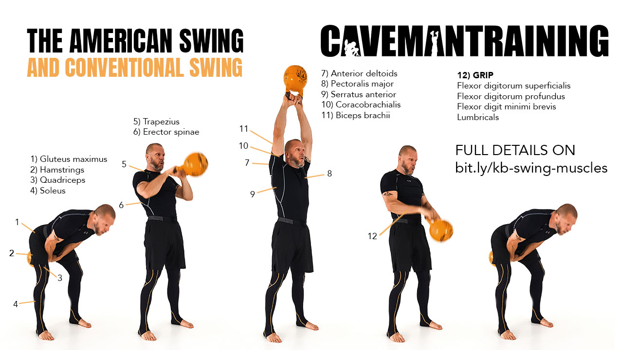 Muscles Worked With Kettlebell Swings Conventional