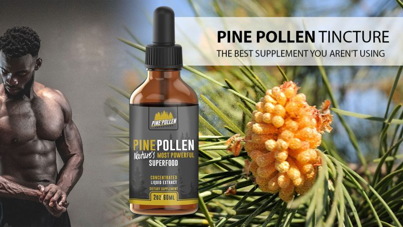 The Pine Pollen Tincture: The Best Supplement You Aren't Using